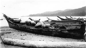 Makah Whaling Historylink Org